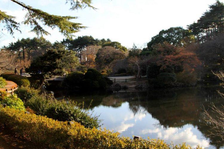 itinerario-giappone-12-giorni-tokyo-Gyoen-National-Garden