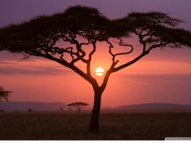 viaggio-kenya-programma