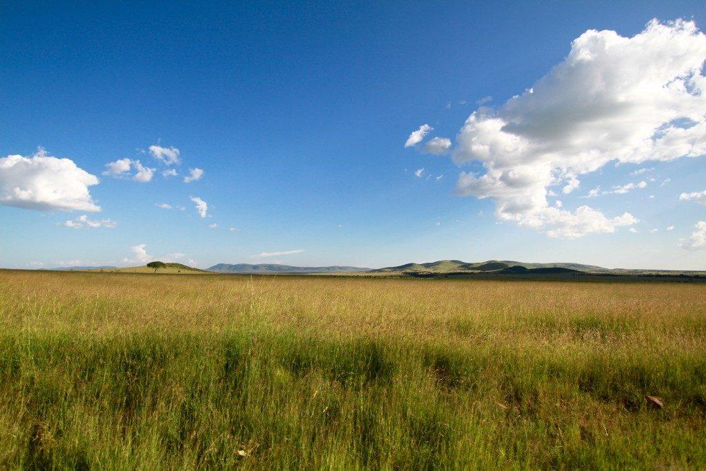 itinerario-safari-kenya-masai-mara