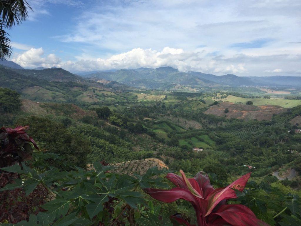 Colombia-cosa-vedere-turismo-panorama-caffe