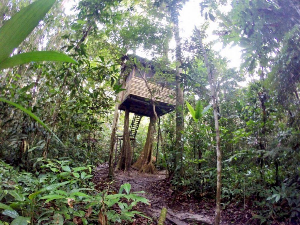 come visitare amazzonia casa sull'albero