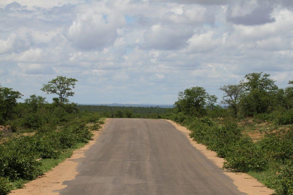 safari-al-parco-kruger-sudafrica-consigli-utili-strada