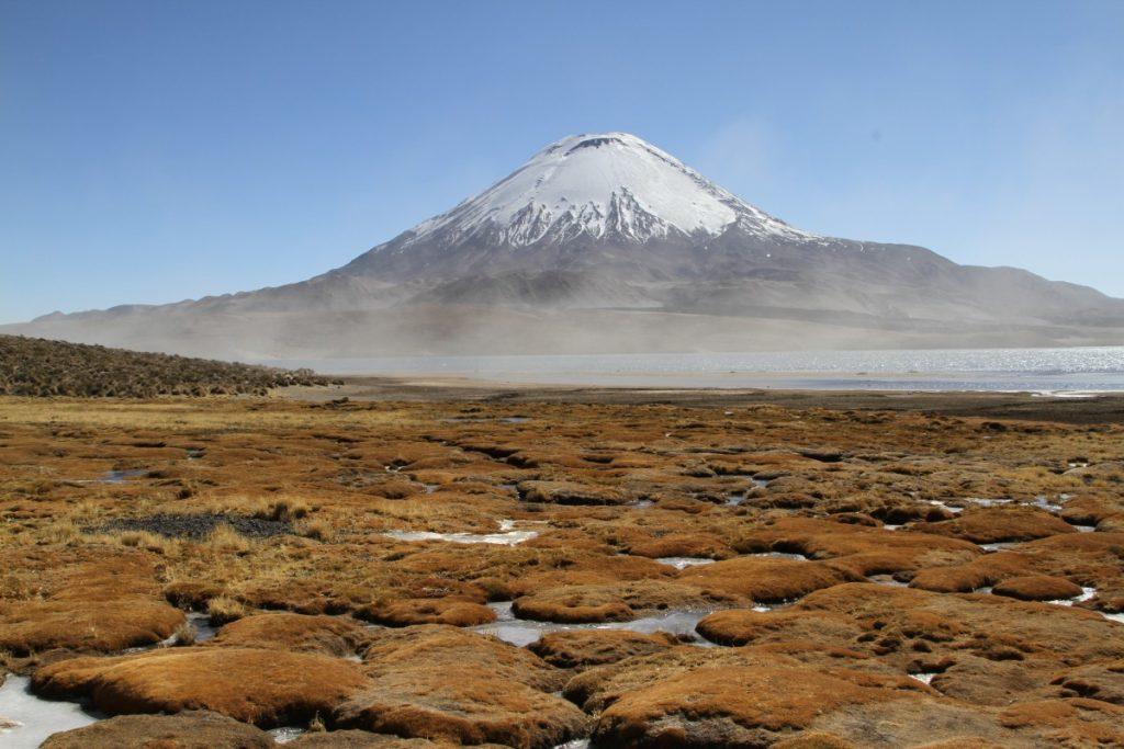 viaggio-in-cile-itinerario-di-10-giorni-parco-di-lauca-lago-chungarà