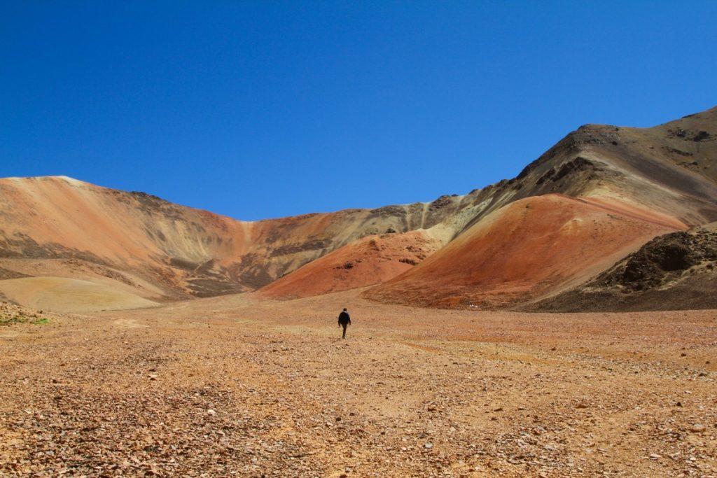 viaggio-in-cile-itinerario-di-10-giorni-parco-di-lauca-suriplaza