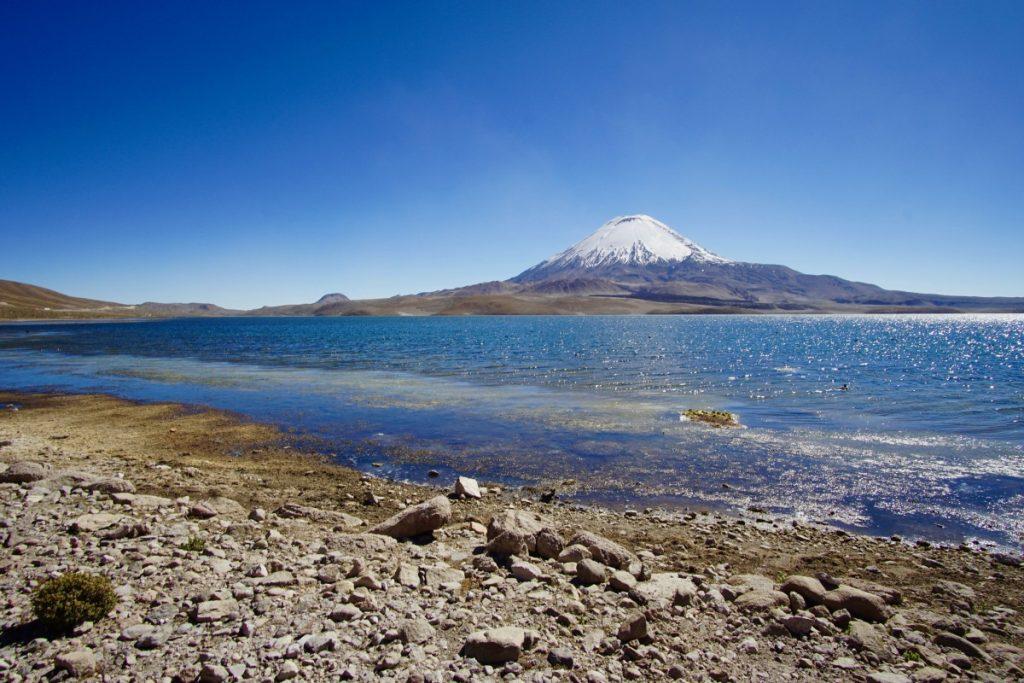 cile-visitare-parque-national-lauca-lago-chungarà