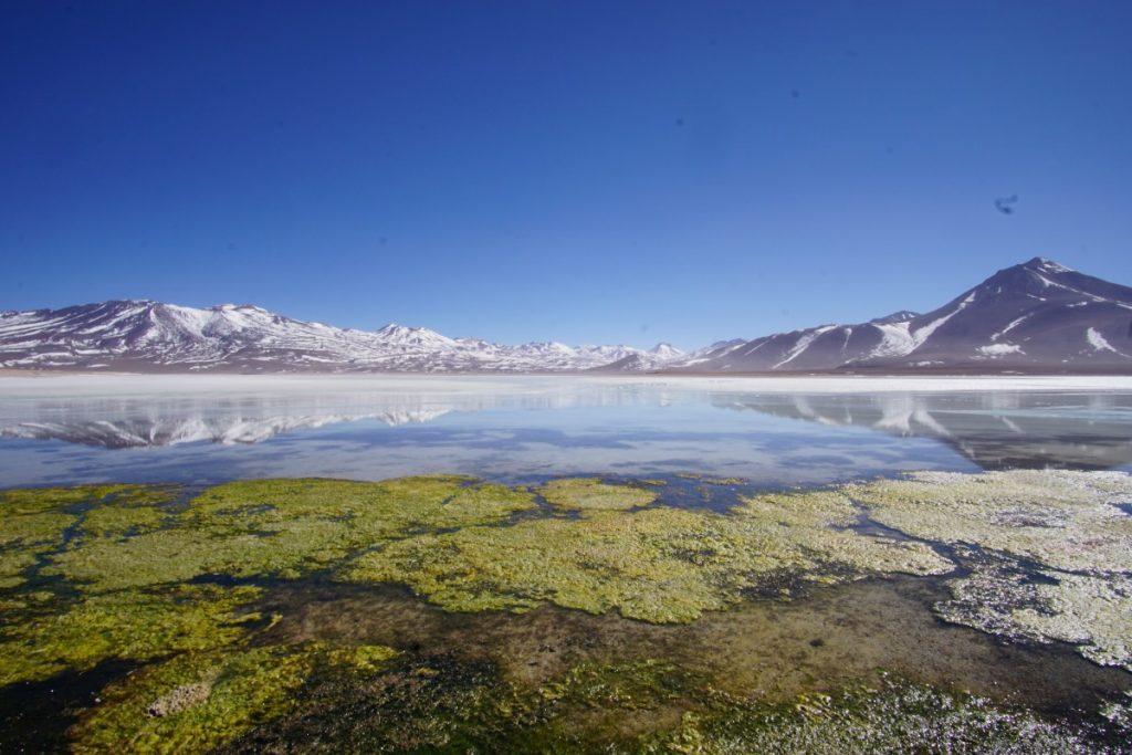 viaggio-in-bolivia-cosa-vedere-in-10-giorni-laguna-blanca