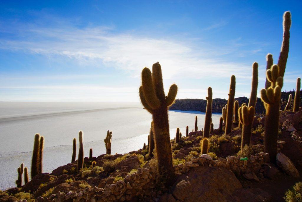 viaggio-in-bolivia-tour-del-salar-de-uyuni-in-3-giorni-Incahuasi