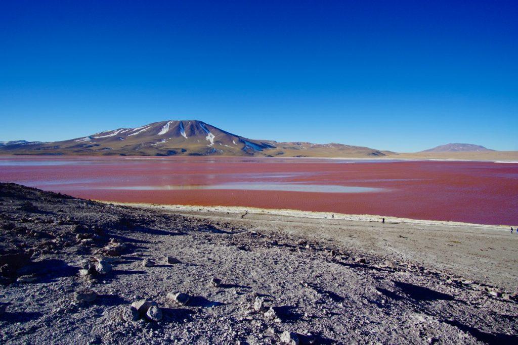 viaggio-in-bolivia-tour-del-salar-de-uyuni-in-3-giorni-laguna-colorada