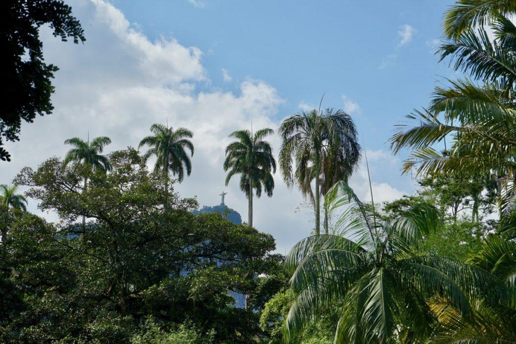 cosa-fare-e-vedere-a-rio-de-janeiro-jardin-botanico