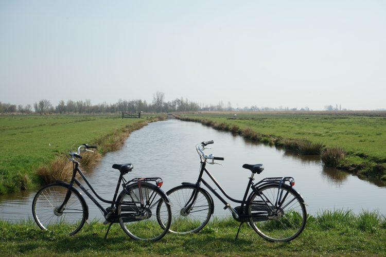 olanda-e-mulini-a-vento-escursione-di-un-giorno-a-zaanse-schans-campagna-olandese