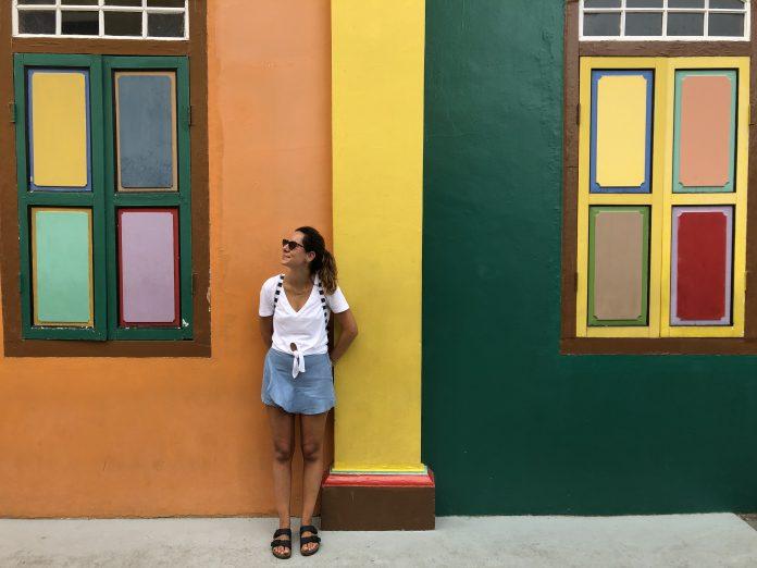 cosa-vedere-e-fare-a-singapore-la-citta-del-futuro-street-art-arab-street